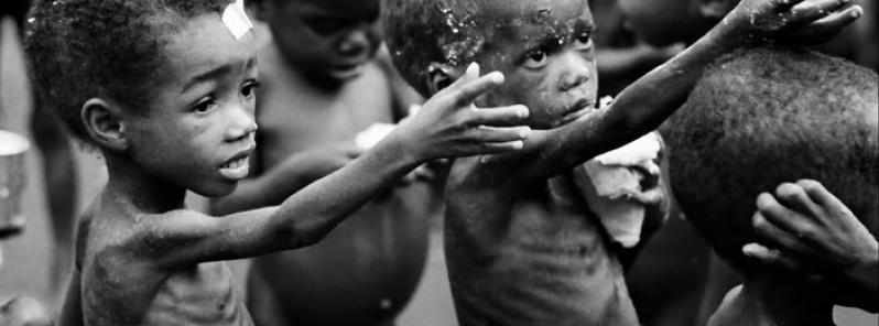 GDO ve Dünya Gıda Krizi